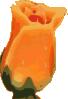 free vector Closed Flower clip art