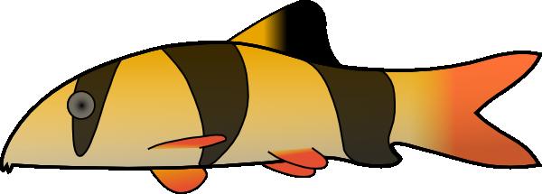 free vector Clown Loach clip art
