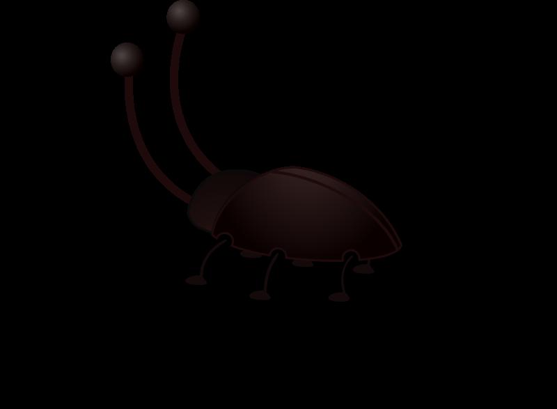 free vector Cockroach