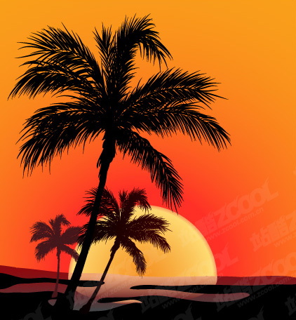 free vector Coconut Beach Sunset Shadow Vector Coconut