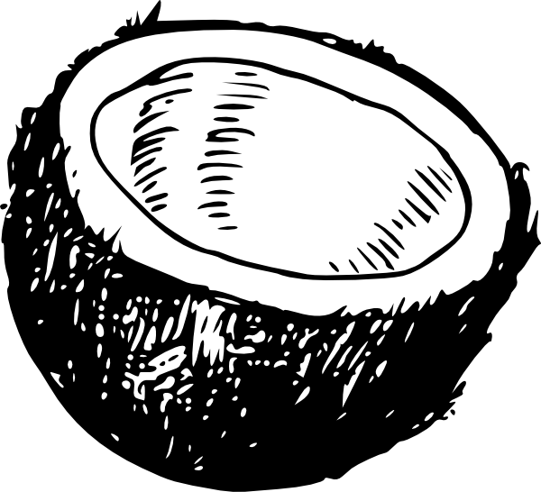 free vector Coconut clip art