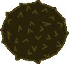 free vector Coconut Fruit clip art