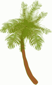 free vector Coconut Tree clip art