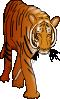 free vector Color Tiger clip art