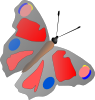 free vector Colorful Butterfly  clip art