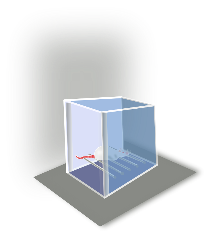 free vector Conditioning Box