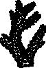 free vector Coral clip art