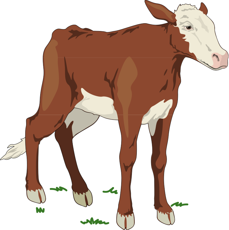 free vector Cow 2