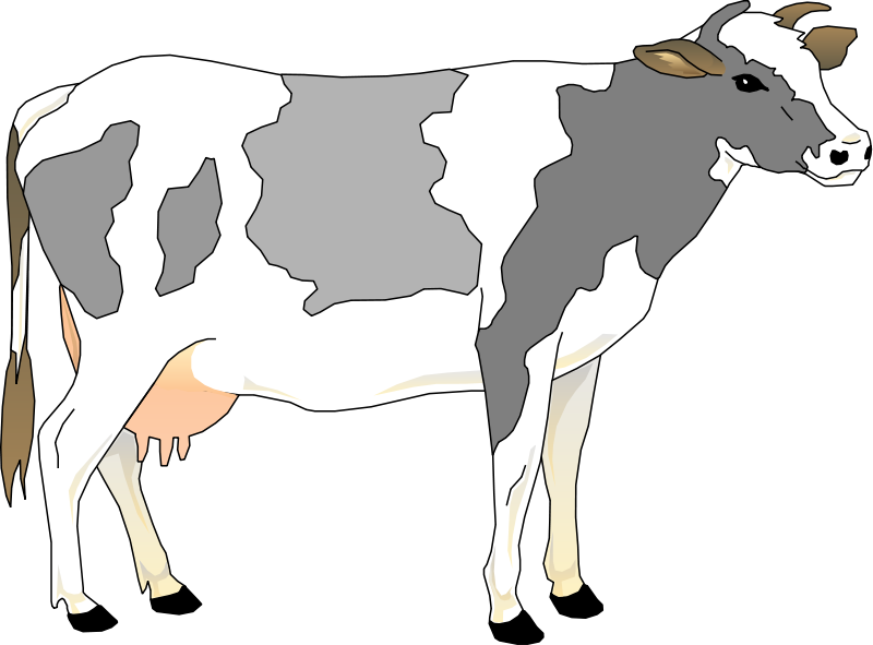 free vector Cow 3