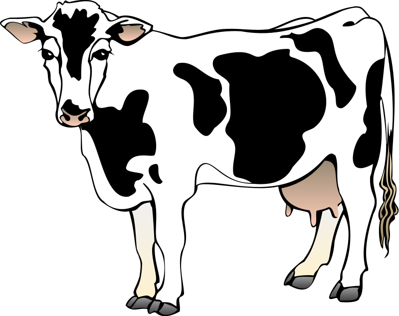 free vector Cow 4