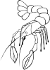 free vector Crawfish (b And W) clip art