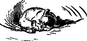 free vector Cub Sleeps clip art