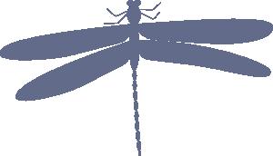 free vector Damselfly clip art