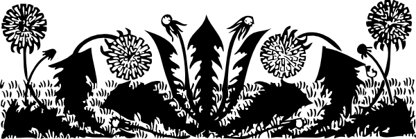 free vector Dandelions clip art