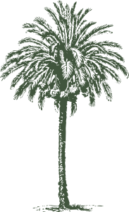 free vector Date Palm clip art