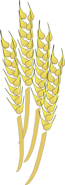 free vector Davosmith Wheat clip art