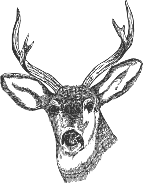 free vector Deer Head clip art