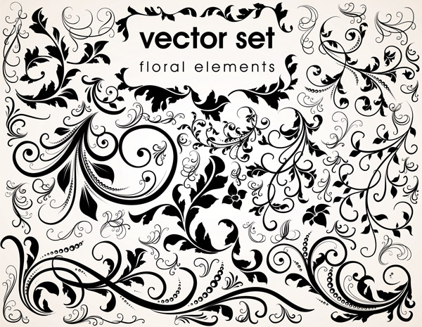 free vector Delicate lace vector