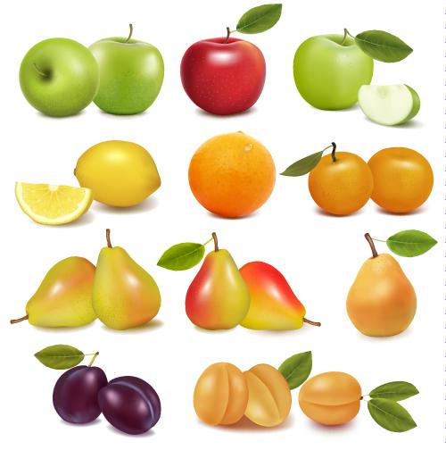 free vector Delicious fruit 02 vector