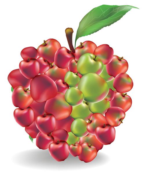 free vector Delicious fruit 05 vector
