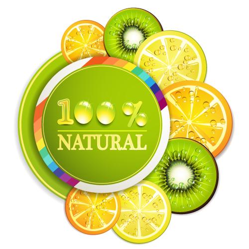 free vector Delicious fruit slices 01 vector