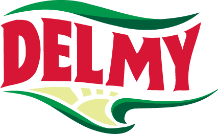 free vector Delmy logo
