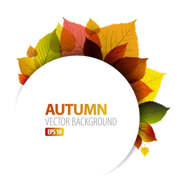 free vector Design vector graphics autumn leaf 1