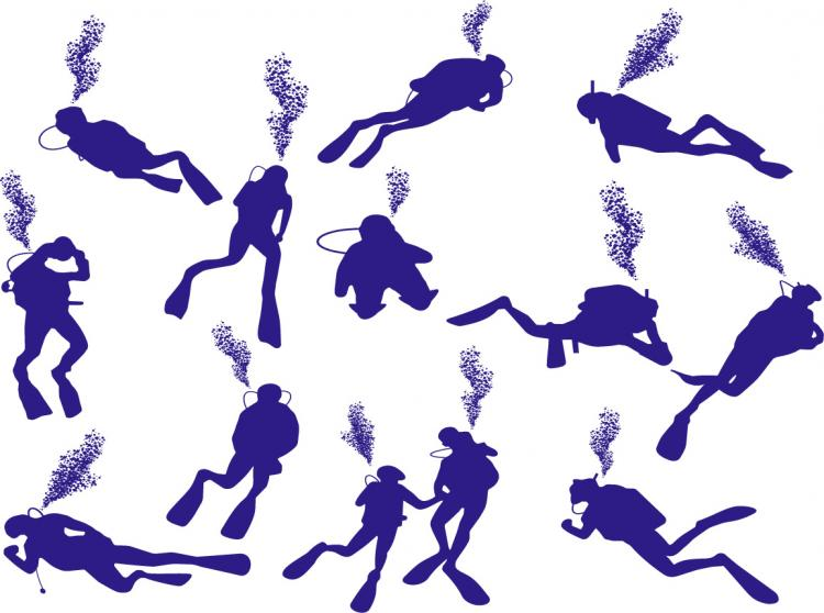free vector Diver silhouette