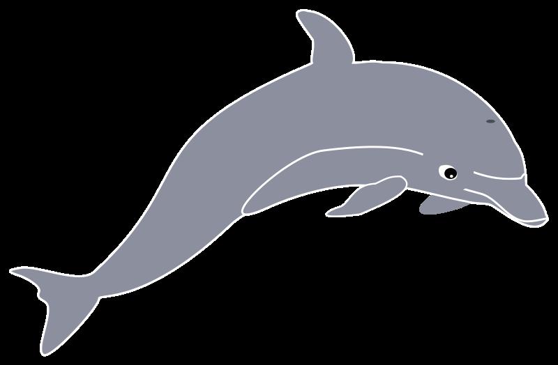 free vector Dolphin enrique meza remix