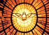free vector Dove In Glass Window clip art