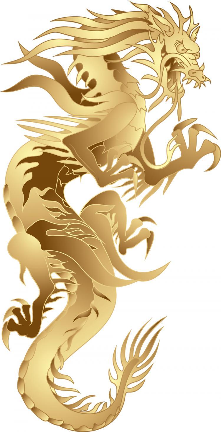 free vector Dragon patterns 05 vector