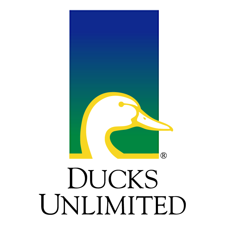 free vector Ducks unlimited 0