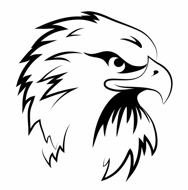 Eagle head Free Vector / 4Vector