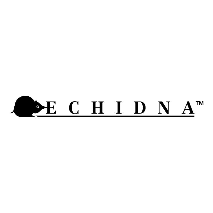 free vector Echidna