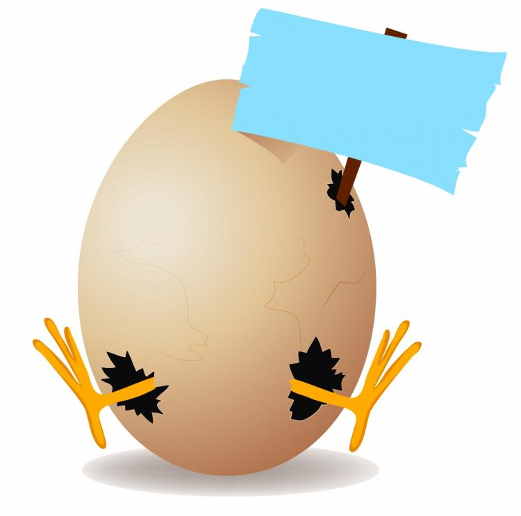 free vector Egg with copy space
