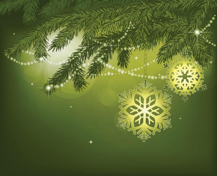 Elegant Christmas Background With Snowflakes Stock Vector: Elegant Snowflake Ornaments (2516) Free EPS Download / 4
