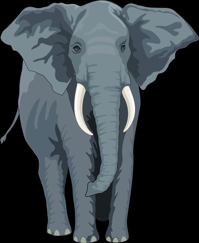 free vector Elephant 2