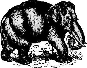 free vector Elephant clip art