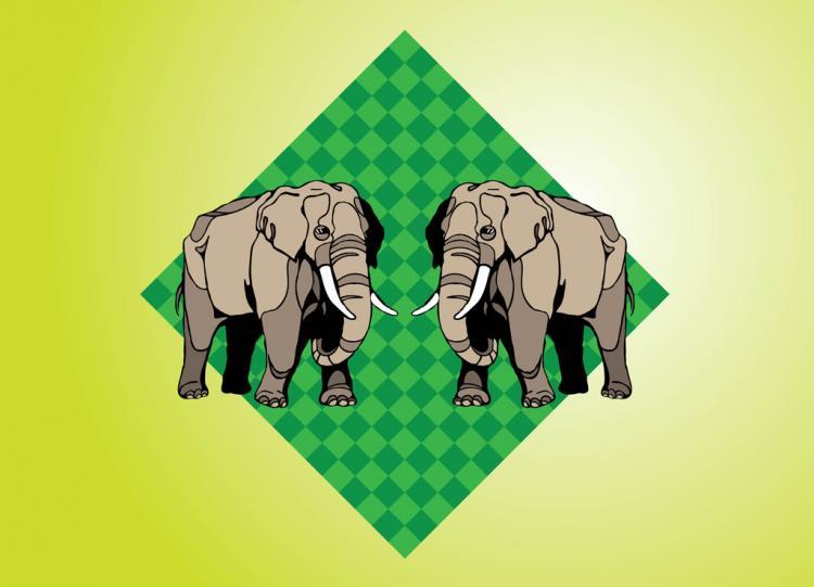 free vector Elephants