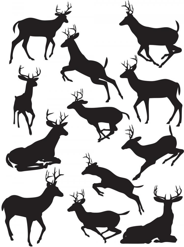 free vector Elk black silhouette vector