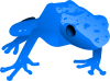 free vector Endangered Blue Poison Dart Frog clip art