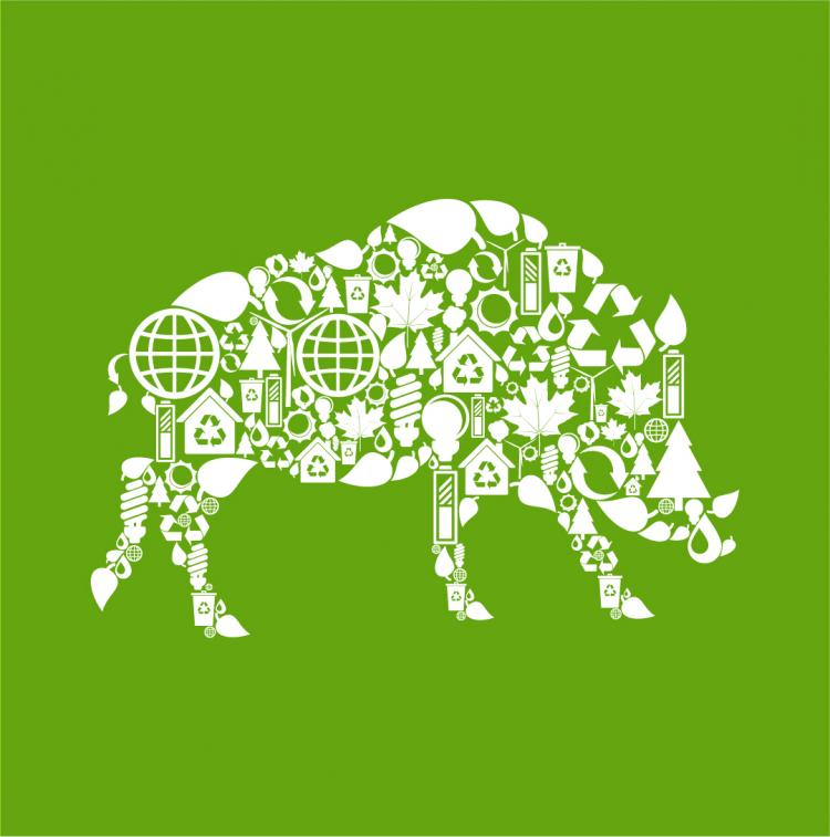 free vector Environmental elements of collage images of animals vector 2