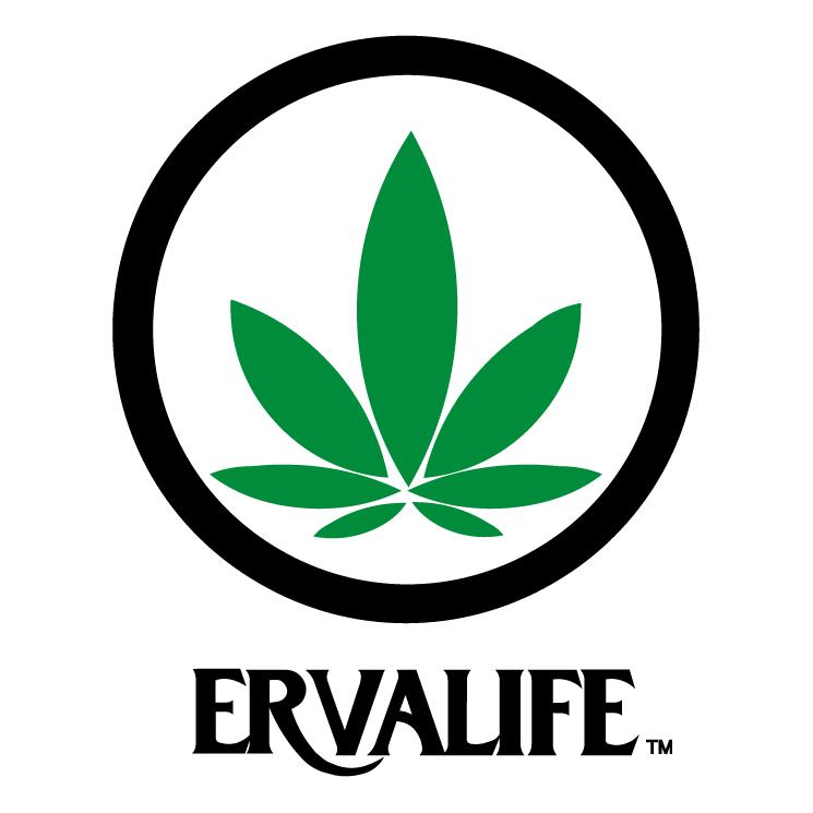 free vector Erva life