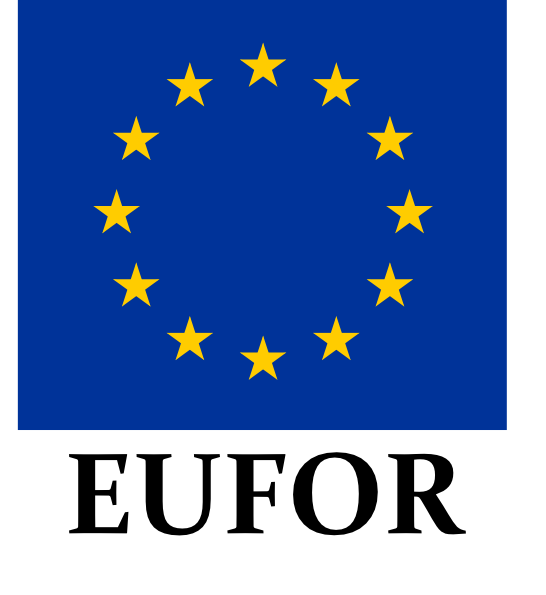 free vector Eufor Coat Of Arms clip art