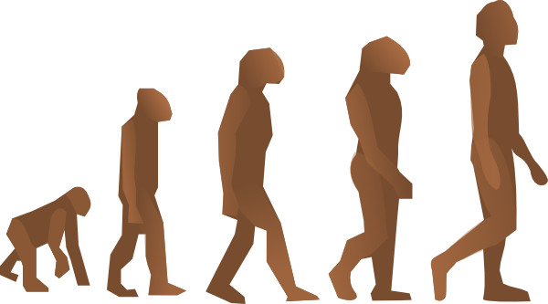 free vector Evolution Steps clip art