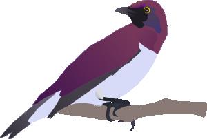 free vector Exotical Bird clip art