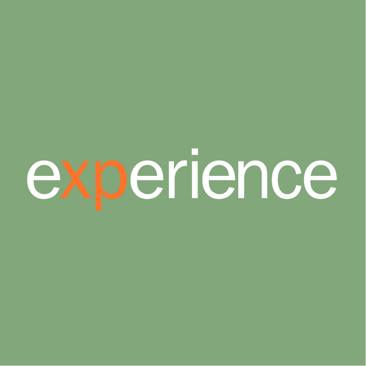 free vector Experience