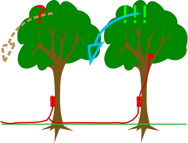 free vector Explosives On Trees clip art