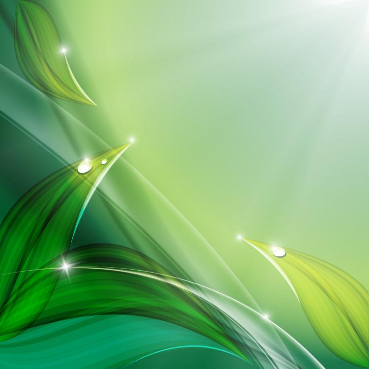 free vector Exquisite leaf background 02 vector