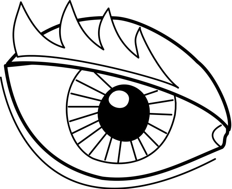 free vector Eye / Oeil